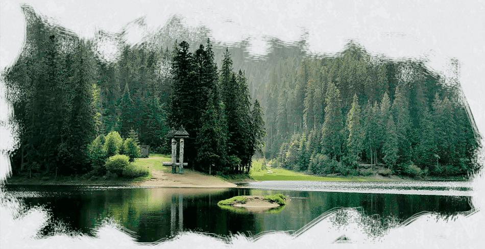 Тур по Закарпатью: Воловец, Пилипец, Мукачево, Берегово,Косино, линия «Арпада», Плай, Львов